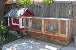 narrow chicken coop
